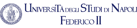 """Università degli studi di Napoli """"Federico II"""": corso di perfezionamento """"Complessità, Multiprofessionalità e Medicina Narrativa. Un approccio multimetodologico""""."""