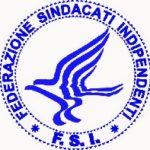 fsi-logo-2002