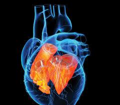 """""""Innovations in Cardiology When Cardiac Imaging meets Clinical Needs"""". Bari – dal 14 al 16 Febbraio 2019. Professioni accreditate: Medico Chirurgo, Tecnico di Radiologia Medica, Tecnico Sanitariodella Fisiopatologia Cardiocircolatoria e Perfusione Cardiovascolare. Assegnati 5,1 (cinque,uno) crediti ECM."""