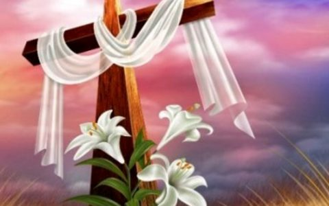 Buona Pasqua. Auguri.